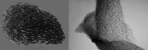 """Figura 5: Esta é uma imagem conceitual do comportamento grupal na visualização afetiva da """"Cúpula da Mente"""". A simulação visual  do comportamento em grupo como cardumes de peixes (à esquerda) e bandos de pássaros (à direita) está ligada ao movimento dos olhos do usuário para gerar respostas do estado afetivo na experiência estética [33]."""