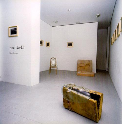 Nuno Ramos. Para Goeldi 1. 1996.