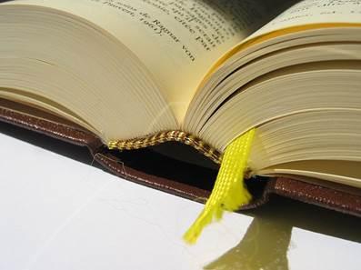 Detalhe da encadernação da Pléiade: não é um simples livro (Fonte:https://upload.wikimedia.org/wikipedia/commons/1/12/Reliure_biblioth%C3%A8que_de_la_Pl%C3%A9iade.jpg)