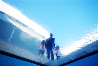 Leandro Erlich, Swimming pool, 1999