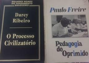 Darcy Ribeiro e Paulo Freire: duas obras, dois testemunhos por um outro Brasil