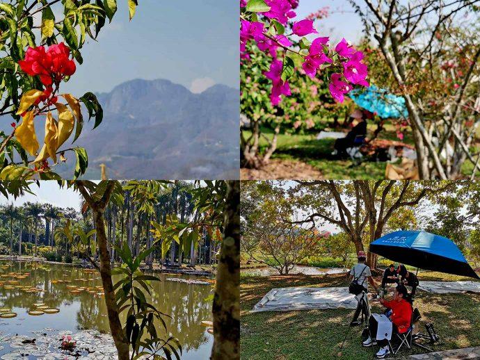 Parque botânico tropical, Menglun | fotos: FFH