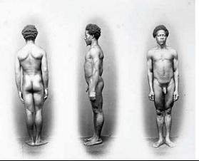 """Augusto Stahl, Série de daguerreótipos de africanos, classificados como """"tipos raciais puros"""". Rio de Janeiro, 1864 (Coleção Louis Agassiz)"""